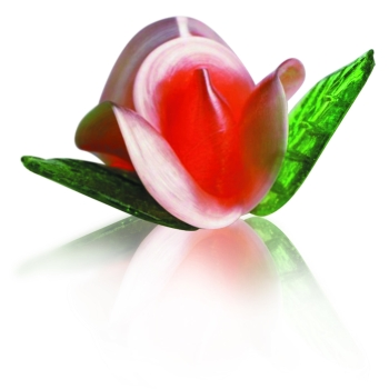 20 Roses mini assorties sucre tiré + 40 feuilles