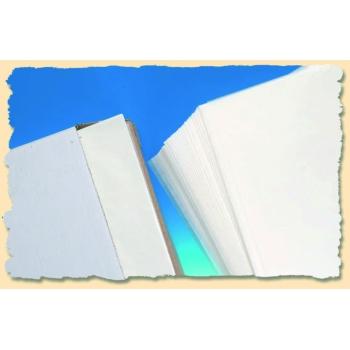 Papier de cuisson siliconé - boite distributrice 500 feuilles - qualité supérieure