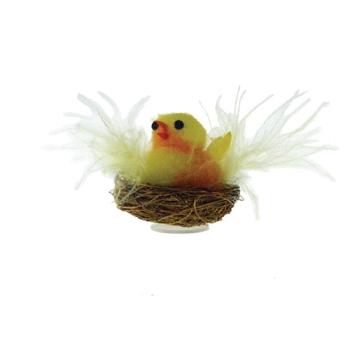 Poussin nid