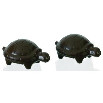 Tortues - 4 empreintes pour 2 tortues