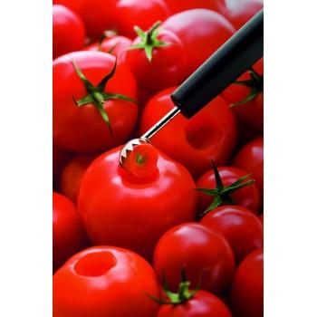 Equeuteur à tomates