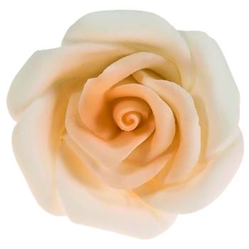 Rose  - la pièce