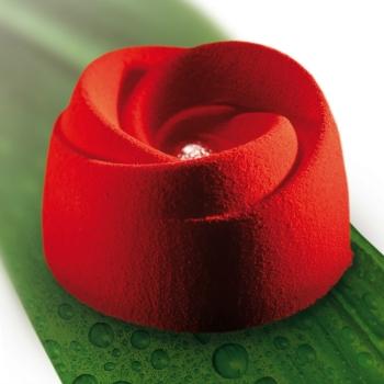 Moule silicone Pavoflex - 24 boutons de rose