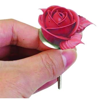 Clous à fleurs inox