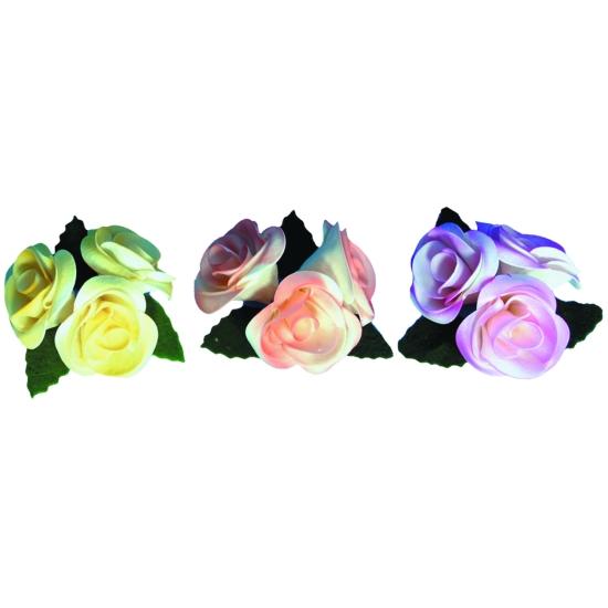 Roses nuancées - boite de 5 unités