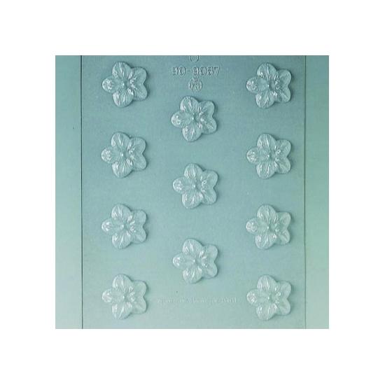 Plaque Divers - 11 fleurs 2