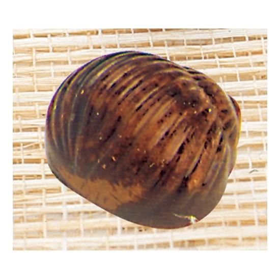Plaque Makrolon 10- 35 pièces