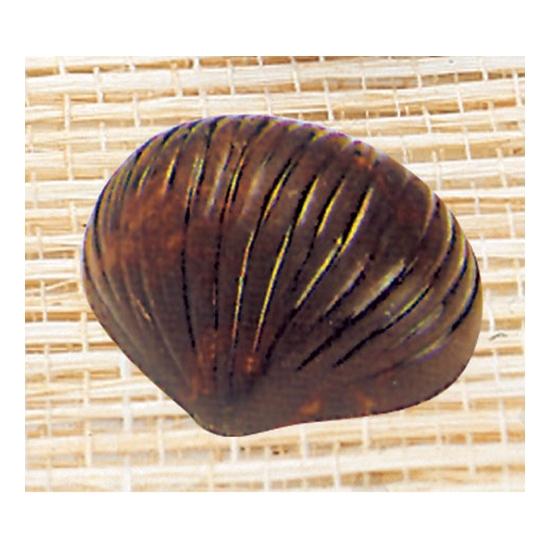 Plaque Makrolon 6- 24 pièces