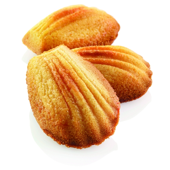 Moule silicone 78 madeleines