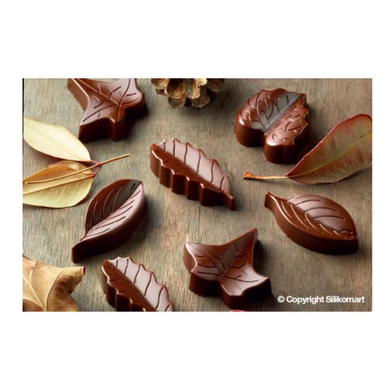"""Plaque silicone pour chocolat """"Easy Choc"""" : 8 feuilles assorties (plaque de 214 x 106 mm)"""