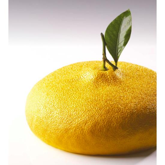 Moule Silicone Citron Gâteau - Collaboration avec Cédric Grolet