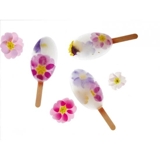 Moule mini glace - Waikiki - 4 x 35 ml